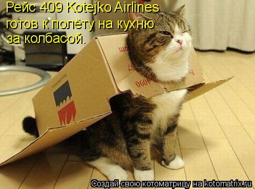 Котоматрица: Рейс 409 Kotejko Airlines  готов к полёту на кухню за колбасой.