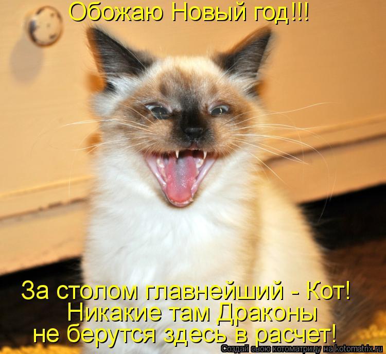 Котоматрица: Обожаю Новый год!!!  Никакие там Драконы  не берутся здесь в расчет! За столом главнейший - Кот!