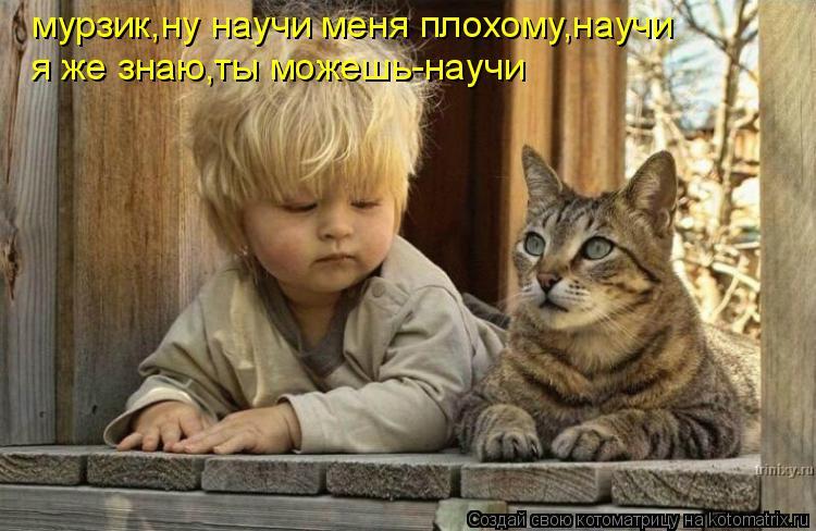 Котоматрица: мурзик,ну научи меня плохому,научи я же знаю,ты можешь-научи