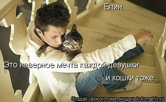 Котоматрица: Блин.... Это наверное мечта каждой девушки..... ...и кошки тоже...