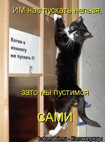 Котоматрица: ИМ нас пускать нельзя, зато мы пустимся  САМИ