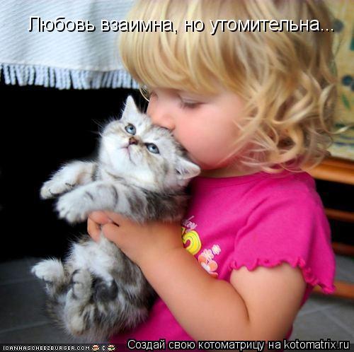 Котоматрица: Любовь взаимна, но утомительна...