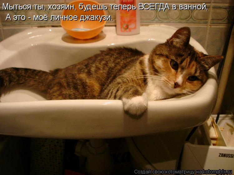 Котоматрица: Мыться ты, хозяин, будешь теперь ВСЕГДА в ванной, А это - моё личное джакузи.