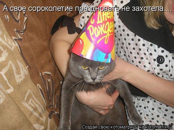 Котоматрица: А свое сороколетие праздновать не захотела....