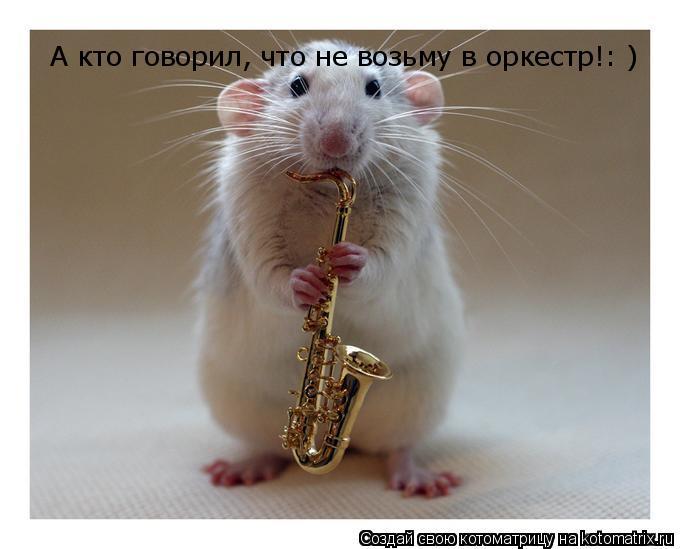 Котоматрица: А кто говорил, что не возьму в оркестр!: )