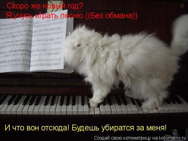 Котоматрица: Скоро же новый год? Я учусь играть песню ((Без обмана)) И что вон отсюда! Будешь убиратся за меня!