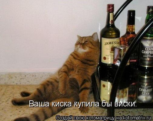 Котоматрица: Ваша киска купила бы виски.