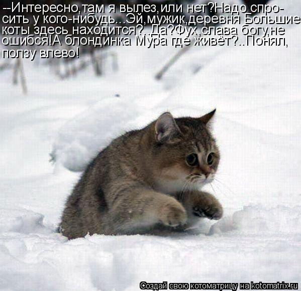 Котоматрица: --Интересно,там я вылез,или нет?Надо спро- сить у кого-нибудь...Эй,мужик,деревня Большие коты здесь находится?..Да?Фух,слава богу,не ошибся!А бл