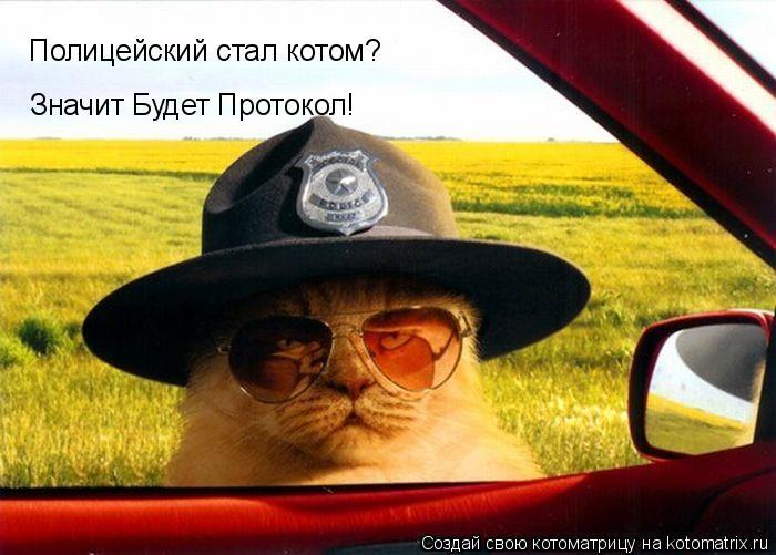 Котоматрица: Полицейский стал котом? Значит Будет Протокол!