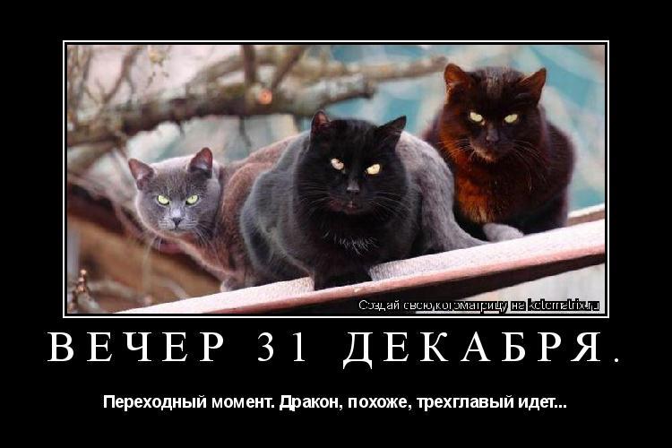 Котоматрица: ВЕЧЕР 31 ДЕКАБРЯ. Переходный момент. Дракон, похоже, трехглавый идет...
