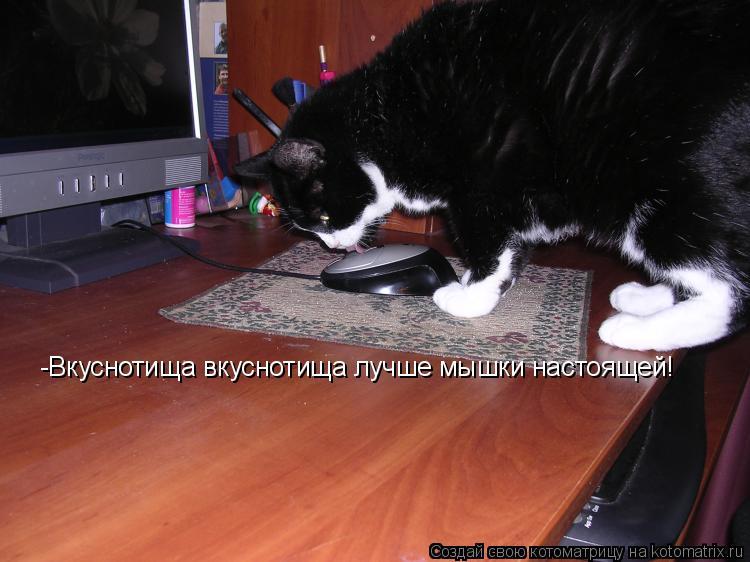 Котоматрица: -Вкуснотища вкуснотища лучше мышки настоящей!