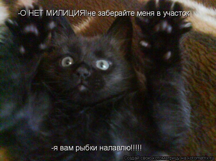 Котоматрица: -О НЕТ МИЛИЦИЯ!не заберайте меня в участок -я вам рыбки налавлю!!!!!