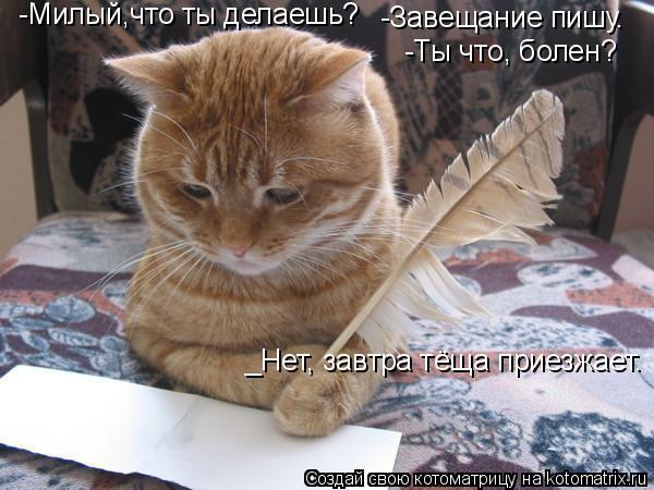 Котоматрица: -Милый,что ты делаешь? -Завещание пишу. -Ты что, болен? _Нет, завтра тёща приезжает.
