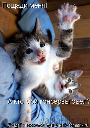 Котоматрица: Пощади меня! А кто мои консервы съел?