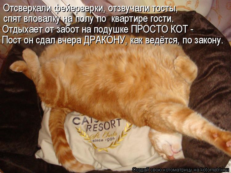 Котоматрица: Отсверкали фейерверки, отзвучали тосты, спят вповалку на полу по  квартире гости. Отдыхает от забот на подушке ПРОСТО КОТ -  Пост он сдал вче