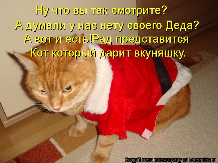 Котоматрица: Ну что вы так смотрите? А думали у нас нету своего А думали у нас нету своего Деда? А вот и есть!Рад представится Кот который дарит вкуняшку.