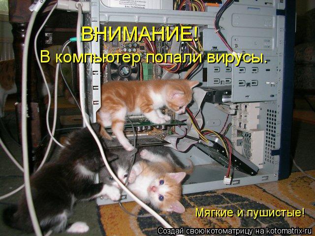 Котоматрица: ВНИМАНИЕ! Мягкие и пушистые! В компьютер попали вирусы.