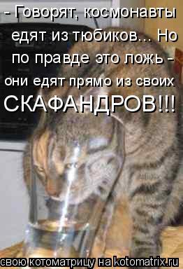 Котоматрица: - Говорят, космонавты едят из тюбиков... Но по правде это ложь - они едят прямо из своих СКАФАНДРОВ!!!