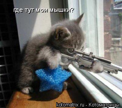 Котоматрица: где тут мои мышки?