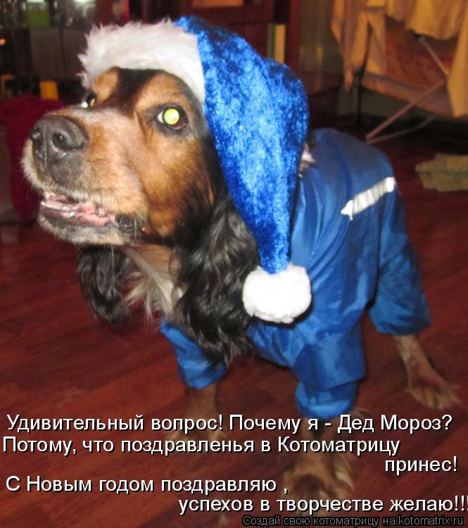 Котоматрица: Удивительный вопрос! Почему я - Дед Мороз? Потому, что поздравленья в Котоматрицу принес! С Новым годом поздравляю ,  успехов в творчестве же