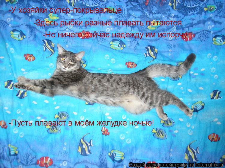 Котоматрица: -У хозяйки супер-покрывальце -Здесь рыбки разные плавать пытаются. -Но ничего сейчас надежду им испорчу -Пусть плавают в моём желудке ночью!