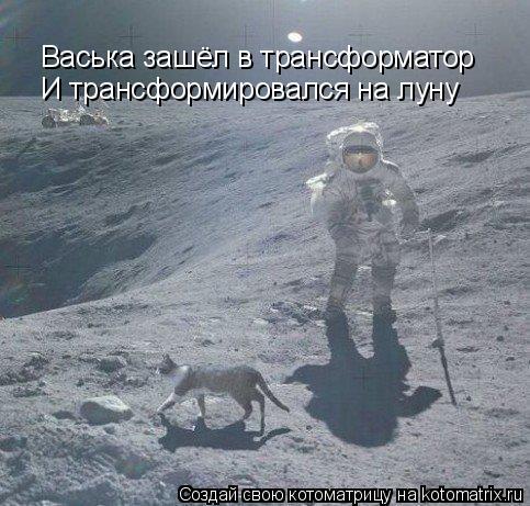 Котоматрица: Васька зашёл в трансформатор И трансформировался на луну