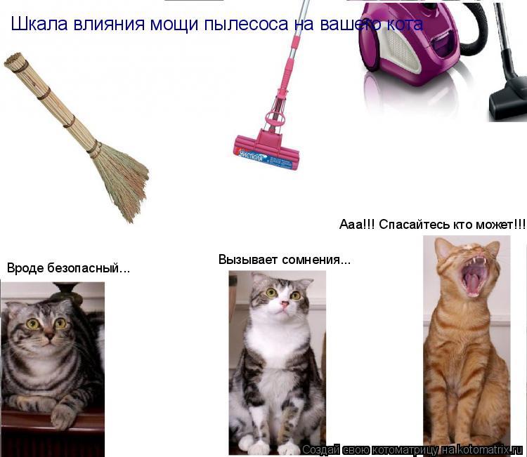 Котоматрица: Вроде безопасный... Вызывает сомнения... Ааа!!! Спасайтесь кто может!!! Шкала влияния мощи пылесоса на вашего кота