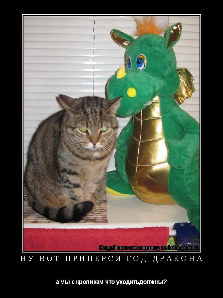 Котоматрица: ну вот припёрся год дракона а мы с кроликам что уходитьдолжны?