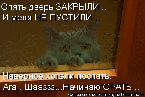 Котоматрица: Опять дверь ЗАКРЫЛИ... И меня НЕ ПУСТИЛИ... Наверное хотели поспать. Ага...Щааззз...Начинаю ОРАТЬ...