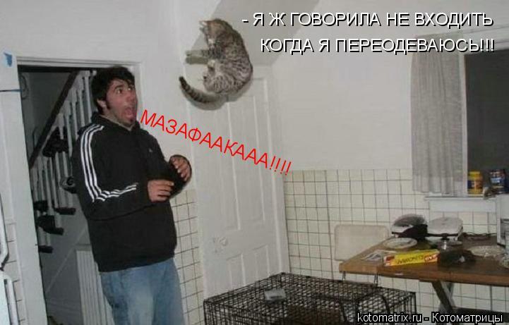 Котоматрица: МАЗАФААКААА!!!! - Я Ж ГОВОРИЛА НЕ ВХОДИТЬ  КОГДА Я ПЕРЕОДЕВАЮСЬ!!!