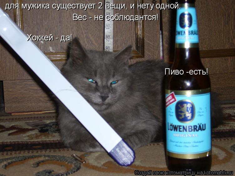Котоматрица: для мужика существует 2 вещи, и нету одной. Пиво -есть! Хоккей - да! Вес - не соблюдантся!
