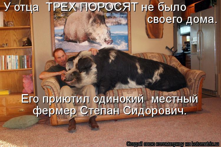 Котоматрица: своего дома. У отца  ТРЕХ ПОРОСЯТ не было  Его приютил одинокий  местный  фермер Степан Сидорович.