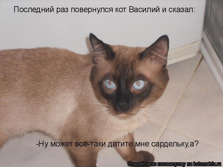 Котоматрица: Последний раз повернулся кот Василий и сказал: -Ну может всё-таки датите мне сардельку,а?