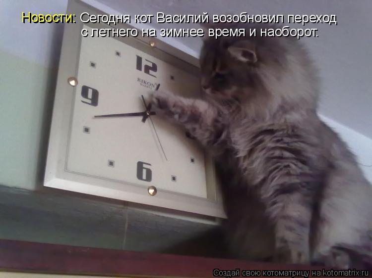 Котоматрица: Новости: Сегодня кот Василий возобновил переход Новости: с летнего на зимнее время и наоборот.