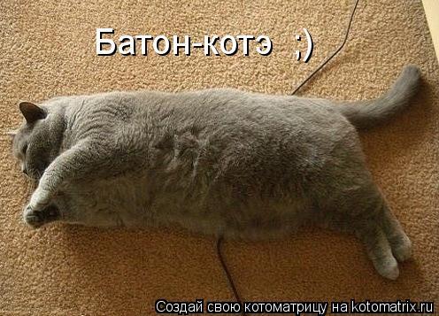 Котоматрица: Батон-котэ  ;)