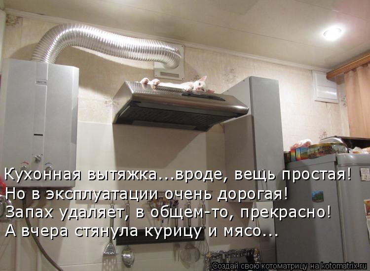 Котоматрица: Кухонная вытяжка..…вроде, вещь простая! Но в эксплуатации очень дорогая! Запах удаляет, в общем-то, прекрасно! А вчера стянула курицу и мясо