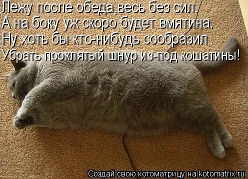 Котоматрица: Лежу после обеда,весь без сил. А на боку уж скоро будет вмятина. Ну,хоть бы кто-нибудь сообразил Убрать проклятый шнур из-под кошатины!