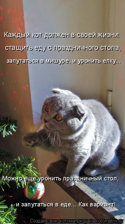 Котоматрица: Каждый кот должен в своей жизни: стащить еду с праздничного стола, запутаться в мишуре, и уронить елку... и запутаться в еде... Как вариант! Мож