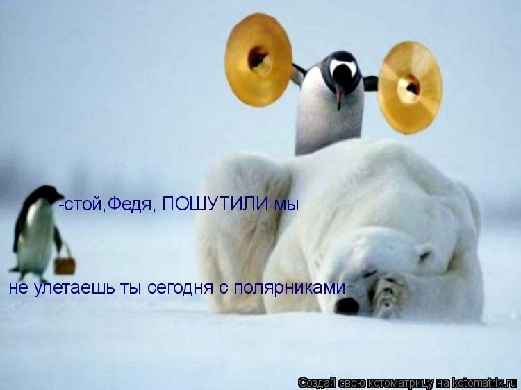 Котоматрица: -стой,Федя, ПОШУТИЛИ мы не улетаешь ты сегодня с полярниками