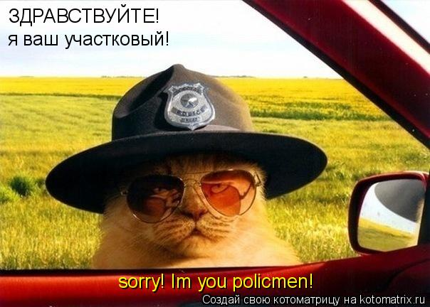 Котоматрица: ЗДРАВСТВУЙТЕ! я ваш участковый! sorry! Im you policmen!