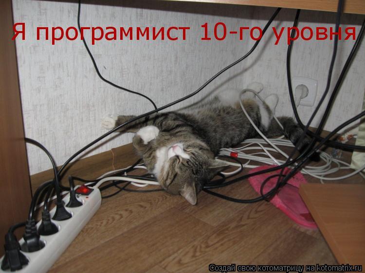 Котоматрица: Я программист 10-го уровня