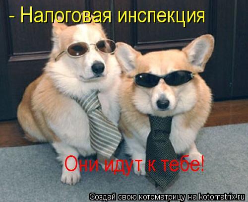 Котоматрица: - Налоговая инспекция  Они идут к тебе!