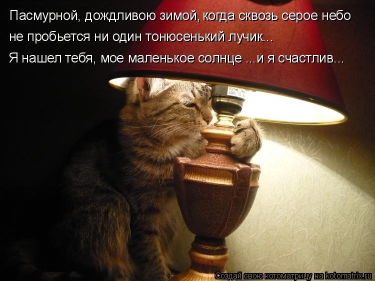 Котоматрица - Пасмурной, дождливою зимой, когда сквозь серое небо не пробьется ни од