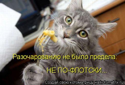 Котоматрица: Разочарованию не было предела: НЕ ПО-ФЛОТСКИ...
