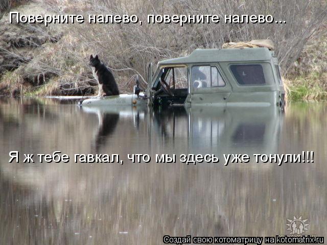 Котоматрица: Поверните налево, поверните налево... Я ж тебе гавкал, что мы здесь уже тонули!!!