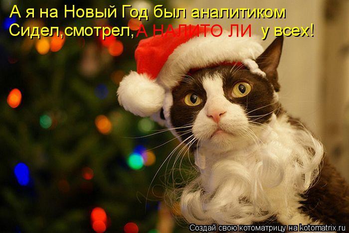Котоматрица: А я на Новый Год был аналитиком Сидел,смотрел, А НАЛИТО ЛИ у всех!