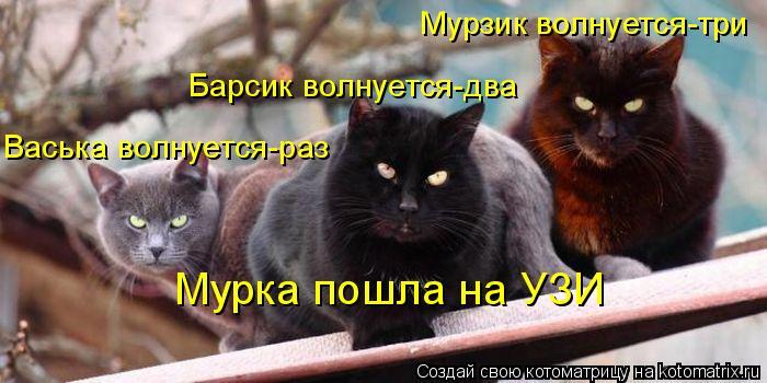 Котоматрица: Васька волнуется-раз Барсик волнуется-два Мурзик волнуется-три Мурка пошла на УЗИ