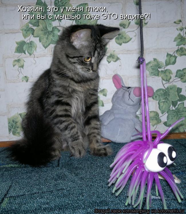 Котоматрица: Хозяин, это у меня глюки, или вы с мышью тоже ЭТО видите?!