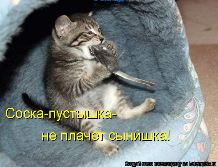Котоматрица - Соска-пустышка- не плачет сынишка!