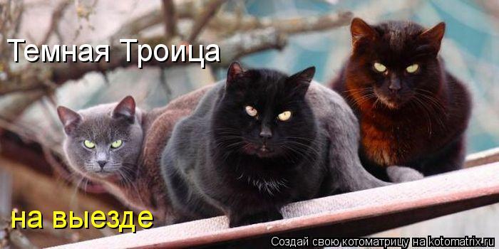 http://kotomatrix.ru/images/lolz/2012/01/09/0k.jpg